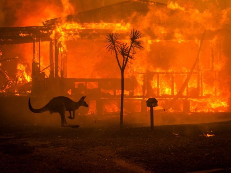 """""""Australia arde mientras sus dirigentes se aferran al carbón"""""""