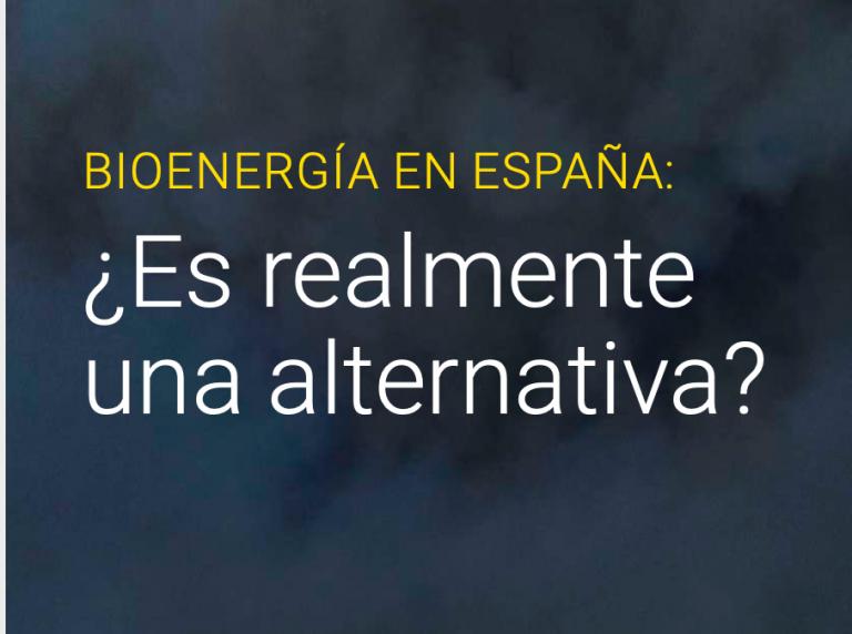 Bioenergía en España ¿es realmente una alternativa?
