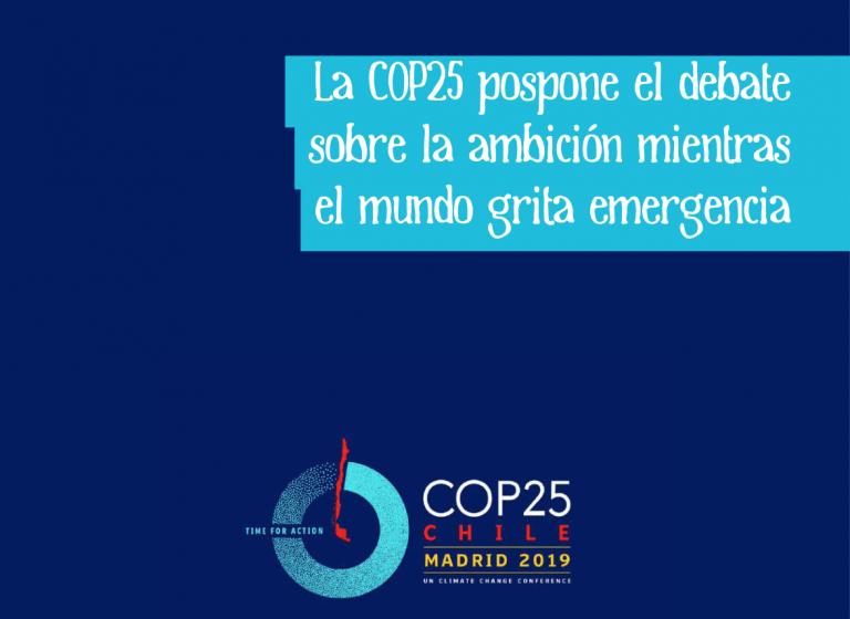 COP-25 Informe