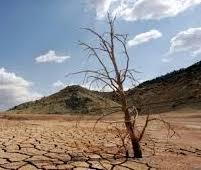 Europa Central: después de la pandemia llega la sequía