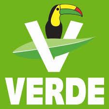 La victoria electoral de los partidos verdes: una realidad en Francia y una utopía en España