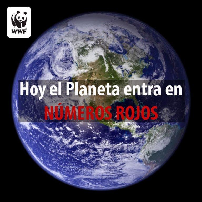 La Tierra sobrepasa hoy su capacidad natural, una fecha ligeramente más tardía en 2020 por el coronavirus, según WWF