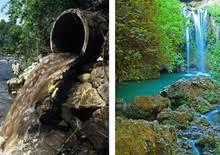 Lindano, el veneno omnipresente en los ríos ibéricos