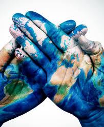 Más allá de la pandemia: los hitos ambientales del año 2020