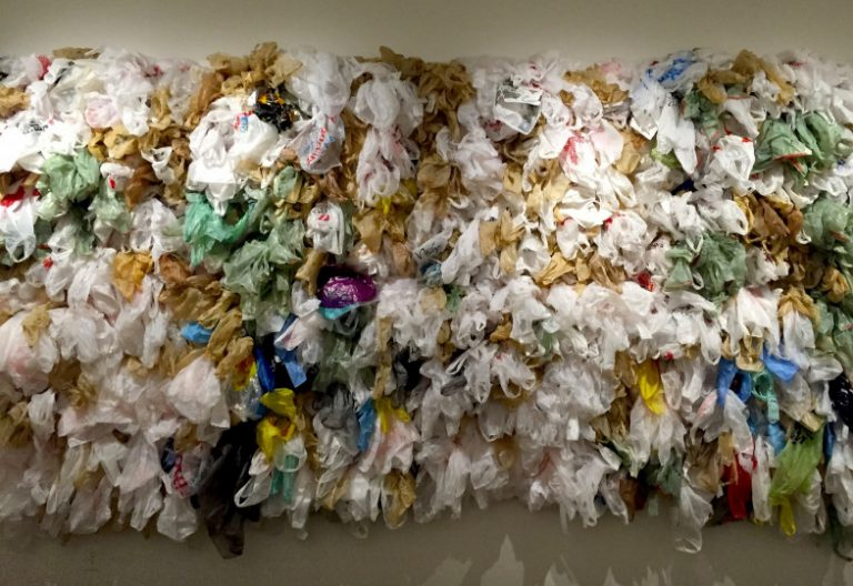 Quiero salvar el planeta pero amo el plástico
