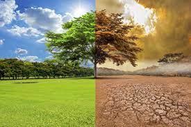 Agua y salud, los ámbitos que más sufrirán el cambio climático en España