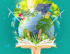 La Ley de Cambio Climático obligará a incluir planes de educación ambiental en colegios, institutos y universidades