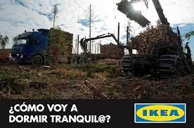 Lee más sobre el artículo Ikea sigue usando madera sucia